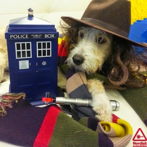 funny-doctor-who-4th-dog-cute-cosplay