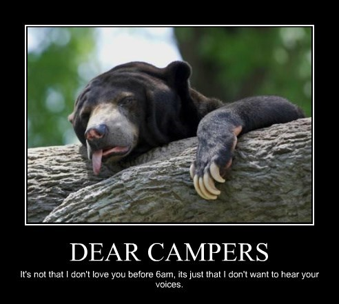 complaint funny bear with me - 8454505728
