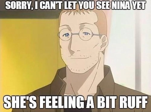 anime memes fullmetal alchemist nina ruff