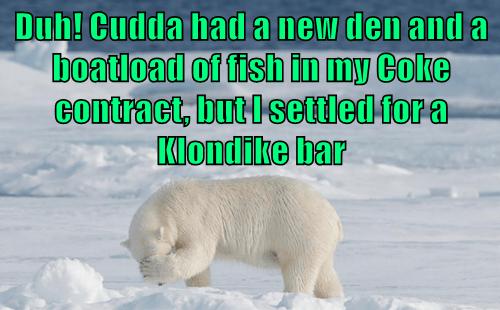animals polar bear captions klondike bar too late - 8454724608