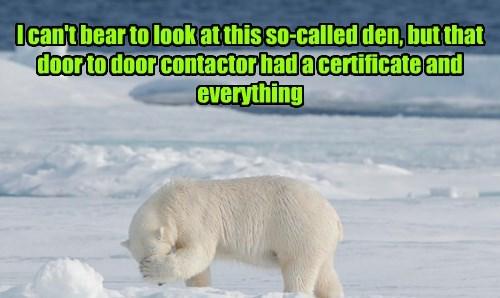 time sharing polar bear funny - 8455259136