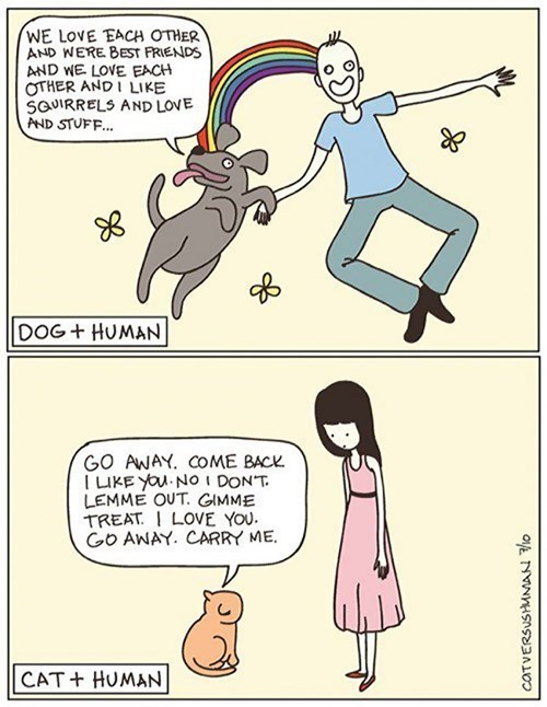 funny-web-comics-dogs-and-humans-vs-cats-and-humans