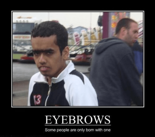 eyebrow wtf poor guy funny - 8455636224