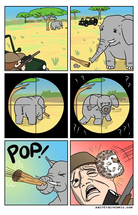 Cazador cazado