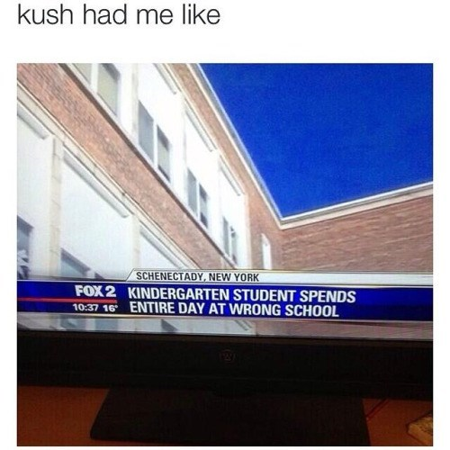 wtf drugs weed funny after 12 - 8455810048