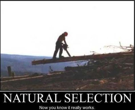 natural selection idiots funny - 8456253952