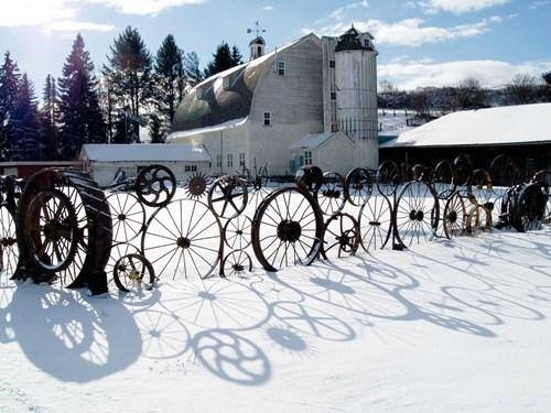 epic-win-pics-design-fence-wheel