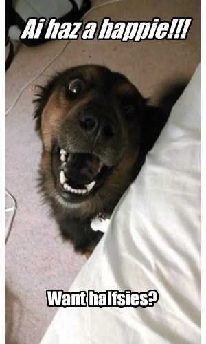 half dogs happy smile - 8456676608