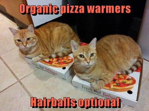 Organic pizza warmers Hairballs optional