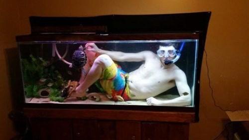 epic-win-pics-swimming-aquarium