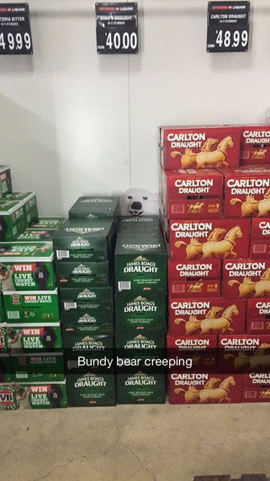the bundy bear is creeping