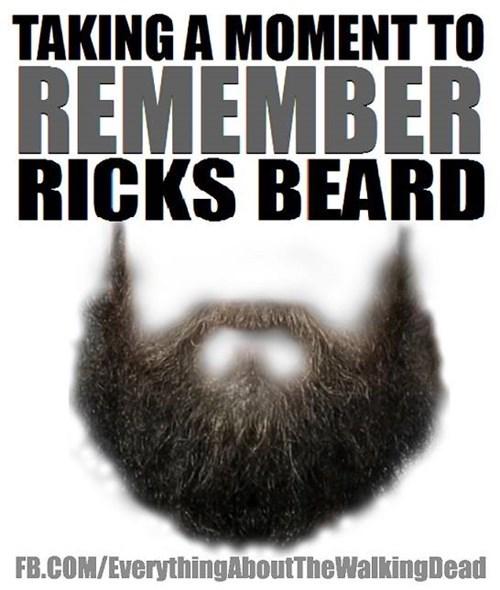 funny-walking-dead-rip-rick-grimes-beard-memoriam