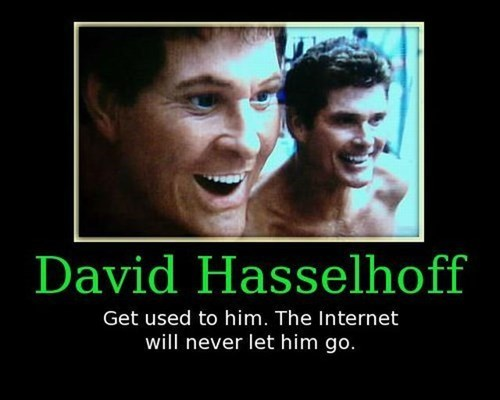 the internets,david hasselhoff,funny