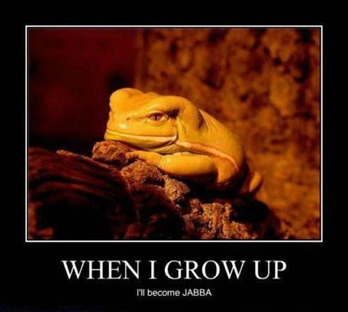 fat star wars jabba funny frog - 8457733632