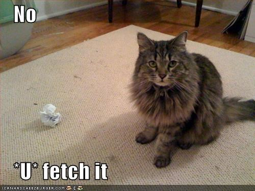 fetch nope - 8458056448