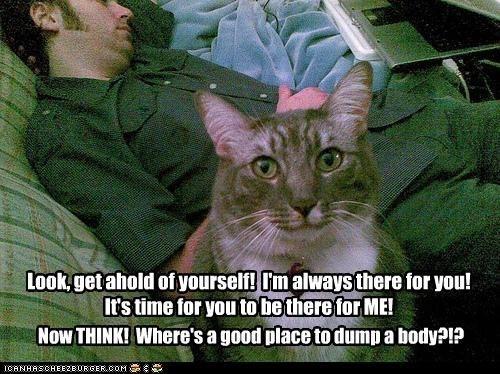 body Cats help - 8458059520