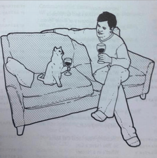 wine is good for chilling with your cat.