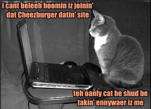 Cheezburger Image 8458134016
