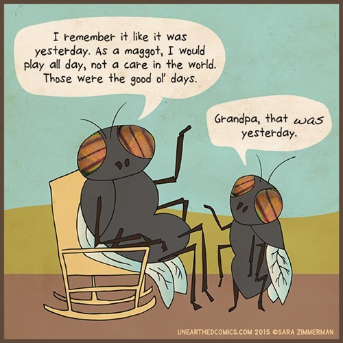funny-web-comics-you-werent-even-alive-then