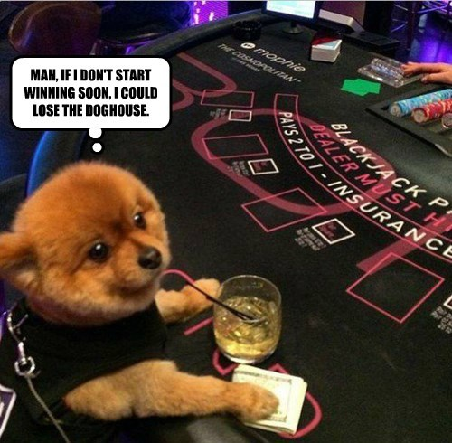 MAN, IF I DON'T START WINNING SOON, I COULD LOSE THE DOGHOUSE.