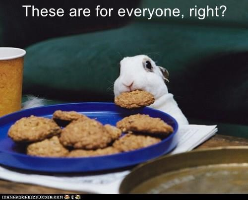 mine,rabbit,cookies,thief