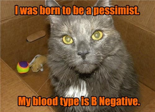 cat,Blood,type,caption