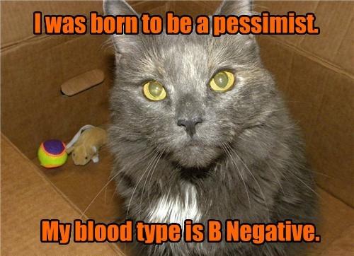 cat Blood type caption - 8459047936
