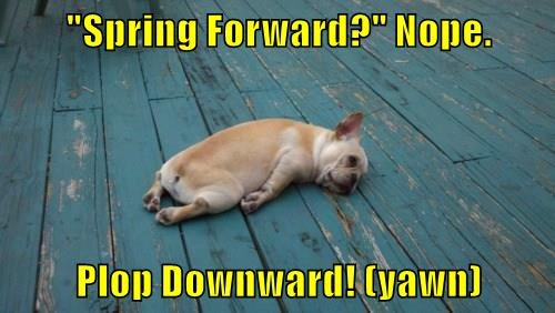 """Spring Forward?"" Nope. Plop Downward! (yawn)"