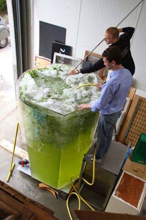 that's one giant mojito.