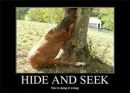 hide and seek doing it wrong funny - 8461406720