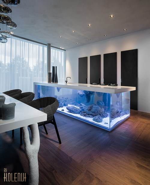 Imagini amuzante si haioase - If You Have More Money Than Sense, Here\'s an Aquarium Dinner Tabletop