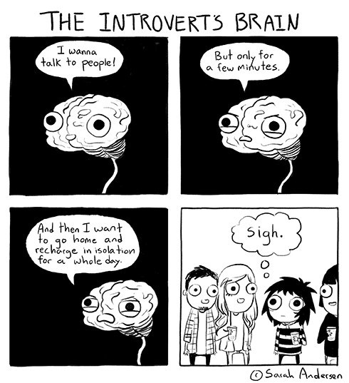 Image result for introvert comic strip
