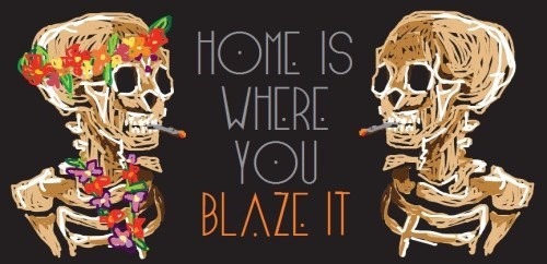 drugs BLAZE weed funny home - 8461944064