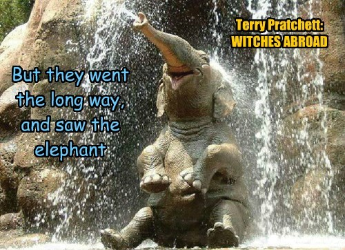 But they went the long way, and saw the elephant Terry Pratchett: WITCHES ABROAD