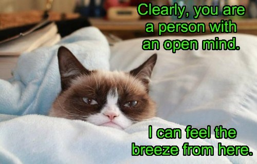 Grumpy Cat open mind caption