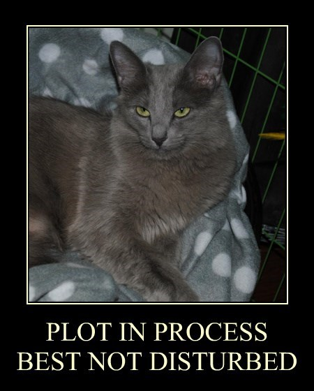 go away,plot,world domination,Cats