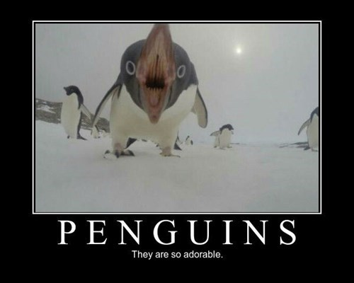 adorable funny penguin - 8463655936