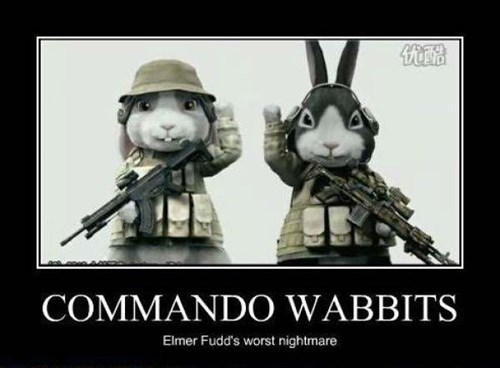 commando,elmer fudd,funny,rabbit