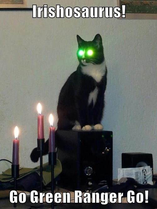 green,St Patrick's Day,eyes,laser,Cats