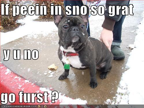If peein in sno so grat  y u no go furst ?