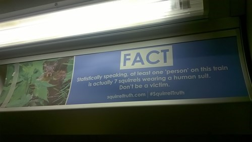 epic-win-pic-sign-squirrel-fact
