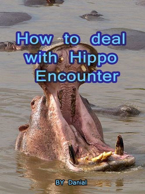 Water - How to deal with Hippo Encounter BY Danial