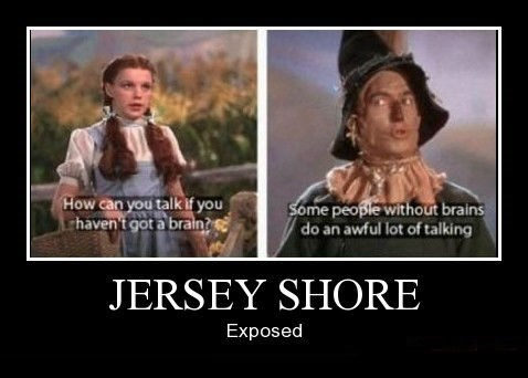 jersey shore brains funny - 8465155072
