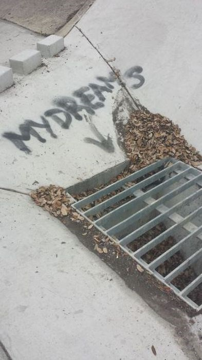 funny-win-pic-graffiti-gutter-dream