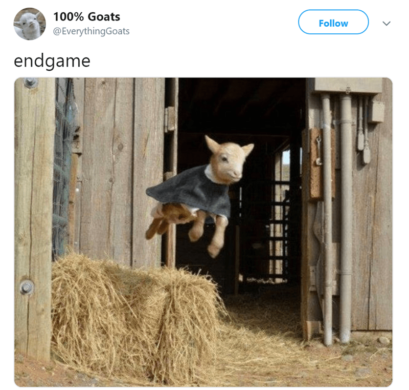 Goat flying like endgame