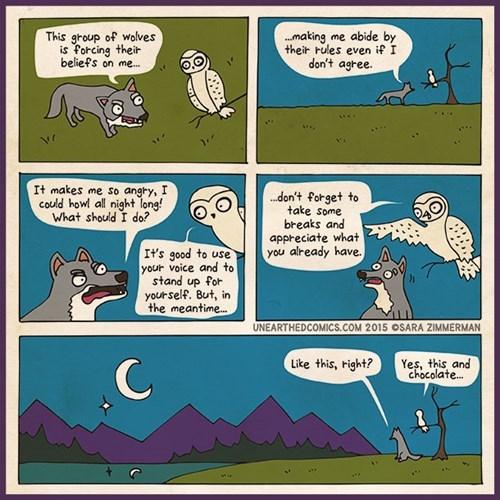 focus mountains web comics - 8465666816