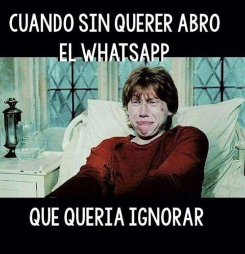 Ignorando el whatsapp