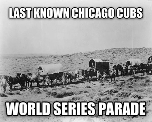 World Series,baseball,MLB,chicago cubs