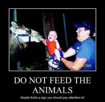 kids idiots funny horse parents - 8466669824