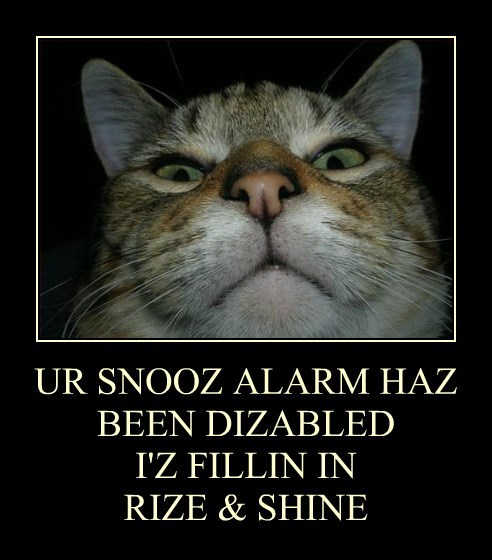 UR SNOOZ ALARM HAZ BEEN DIZABLED I'Z FILLIN IN RIZE & SHINE